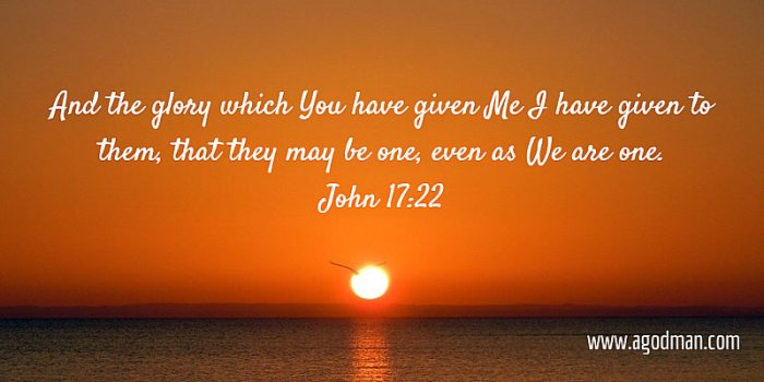 John 17:22 And the glory which You have given Me I have given to them, that they may be one, even as We are one.