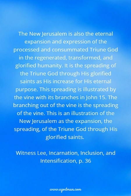 The New Jerusalem is also the eternal expansion and expression of the processed and consummated Triune God in the regenerated, transformed, and glorified humanity. It is the spreading of the Triune God through His glorified saints as His increase for His eternal purpose. This spreading is illustrated by the vine with its branches in John 15. The branching out of the vine is the spreading of the vine. This is an illustration of the New Jerusalem as the expansion, the spreading, of the Triune God through His glorified saints. Witness Lee, Incarnation, Inclusion, and Intensification, p. 36