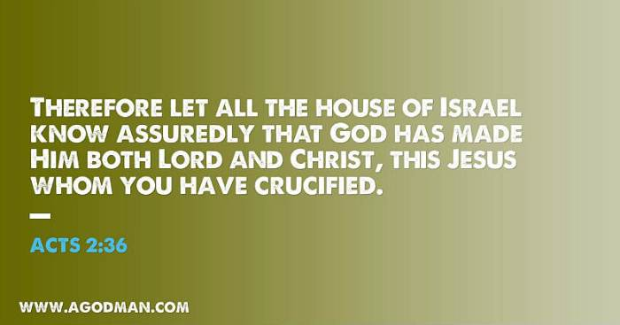 Acts 2:36 Therefore let all the house of Israel know assuredly that God has made Him both Lord and Christ, this Jesus whom you have crucified.