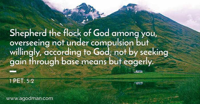 1 Pet. 5:2 Shepherd the flock of God among you, overseeing not under compulsion but willingly, according to God; not by seeking gain through base means but eagerly.