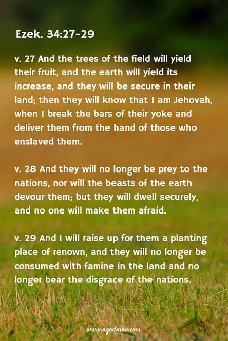 Ezek. 34:27-29 And the trees of the field will yield their fruit, and the earth will yield its increase, and they will be secure in their land; then they will know that I am Jehovah, when I break the bars of their yoke and deliver them from the hand of those who enslaved them. And they will no longer be prey to the nations, nor will the beasts of the earth devour them; but they will dwell securely, and no one will make them afraid. And I will raise up for them a planting place of renown, and they will no longer be consumed with famine in the land and no longer bear the disgrace of the nations.