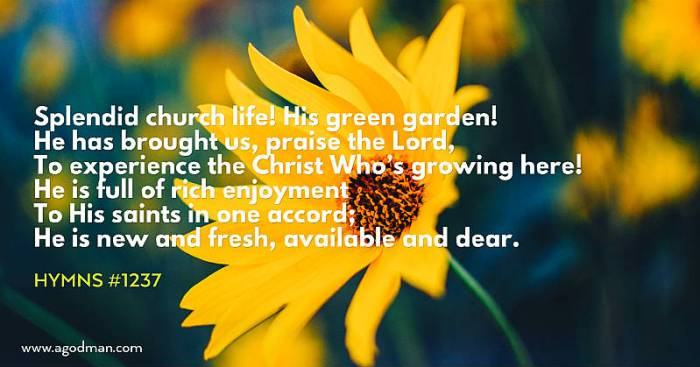 Splendid church life! His green garden! / He has brought us, praise the Lord, / To experience the Christ Who's growing here! / He is full of rich enjoyment / To His saints in one accord; / He is new and fresh, available and dear. Hymns #1237
