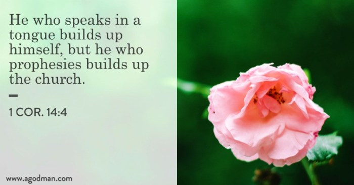 1 Cor. 14:4 He who speaks in a tongue builds up himself, but he who prophesies builds up the church.