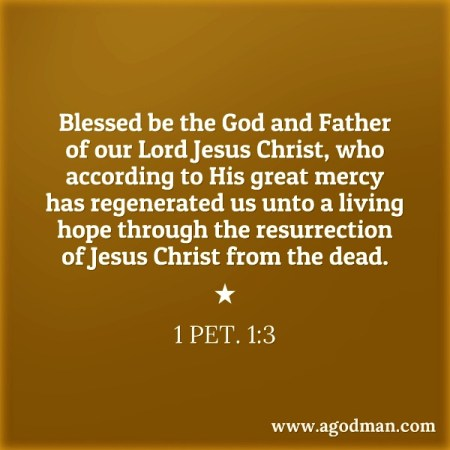 1 Pet. 1:3 Blessed be the God and Father of our Lord Jesus Christ, who according to His great mercy has regenerated us unto a living hope through the resurrection of Jesus Christ from the dead.