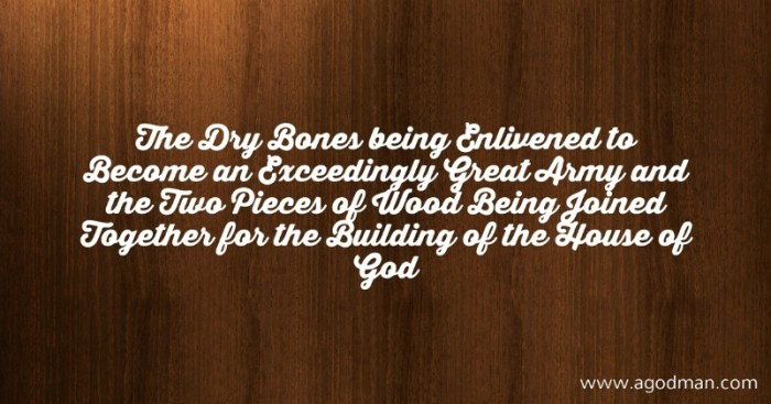 The Dry Bones being Enlivened to Become an Exceedingly Great Army and the Two Pieces of Wood Being Joined Together for the Building of the House of God