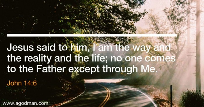 John 14:6 Jesus said to him, I am the way and the reality and the life; no one comes to the Father except through Me.