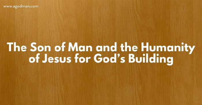 The Son of Man and the Humanity of Jesus for God's Building
