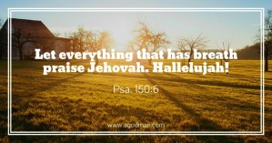 """Praise the Lord, we are Becoming the Reality of """"God is There"""", the New Jerusalem!"""