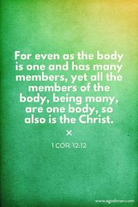 The Church as the Body of Christ is the Corporate Christ, the Body-Christ