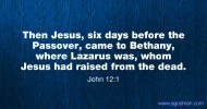 John 12:1 Then Jesus, six days before the Passover, came to Bethany, where Lazarus was, whom Jesus had raised from the dead.