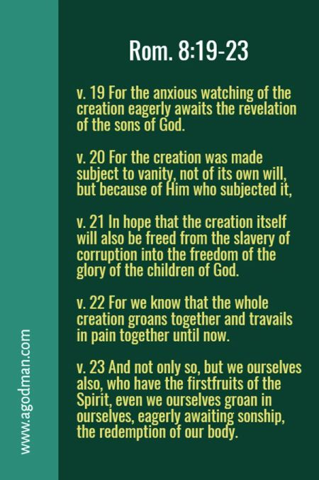 Rom. 8:19-23 v. 19 For the anxious watching of the creation eagerly awaits the revelation of the sons of God. v. 20 For the creation was made subject to vanity, not of its own will, but because of Him who subjected it, v. 21 In hope that the creation itself will also be freed from the slavery of corruption into the freedom of the glory of the children of God. v. 22 For we know that the whole creation groans together and travails in pain together until now. v. 23 And not only so, but we ourselves also, who have the firstfruits of the Spirit, even we ourselves groan in ourselves, eagerly awaiting sonship, the redemption of our body.