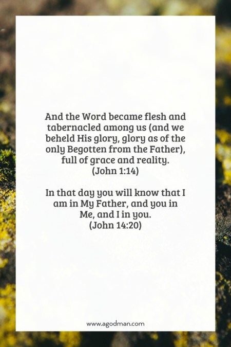 John 1:14 And the Word became flesh and tabernacled among us (and we beheld His glory, glory as of the only Begotten from the Father), full of grace and reality. John 14:20 In that day you will know that I am in My Father, and you in Me, and I in you.