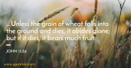 John 12:24 ...Unless the grain of wheat falls into the ground and dies, it abides alone; but if it dies, it bears much fruit.