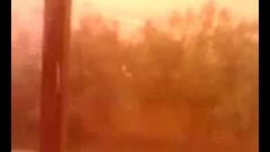 Photo of باالفيديو: عاصفة رملية تضرب مدينة وجدة
