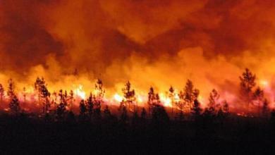 Photo of حريق غابوي شب  بإقليم تطوان  أتى على نحو 85 هكتارا ثم السيطرة عليه