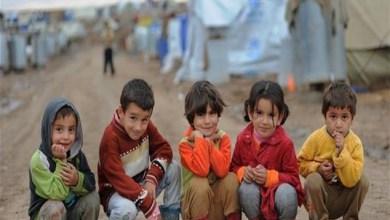 Photo of أكثر من نصف الأطفال اللاجئين في العالم محرومون من التعليم