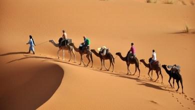Photo of موقع إسباني: المغرب يتموقع كأول وجهة سياحية إفريقية