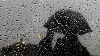 Photo of مقاييس التساقطات المطرية المسجلة بالمملكة خلال الـ 24 ساعة الماضية