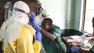 Photo of الكونغو تسجل 15 حالة إصابة جديدة بالإيبولا في يوم واحد