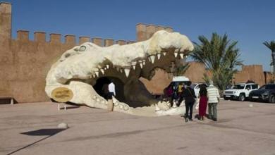 "Photo of حديقة التماسيح (كروكو بارك) بأكادير تغني عرضها الترفيهي بفتح ""مغارة الثعابين"""