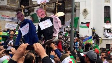 Photo of فيديو/مقال: الاحتجاجات في الجزائر للأسبوع السابع على التوالي