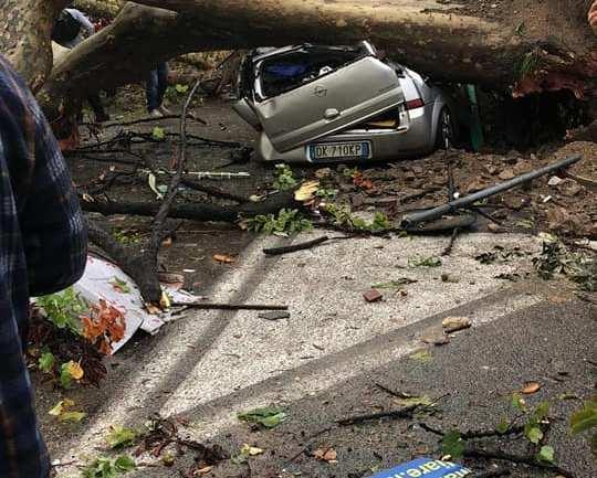 """Maltempo. Simeone (FI) """"Chiederemo stato di calamità naturale in Regione"""""""