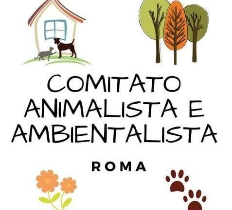 Roma. Comitato animalista e ambientalista, ancora in attesa del verbale del 18 marzo