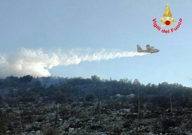 Incendi boschivi in provincia di Latina, soluzioni proposte da Acli Terra Latina.