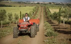 Dalla Regione Lazio 2 milioni di euro per consulenze alle aziende agricole