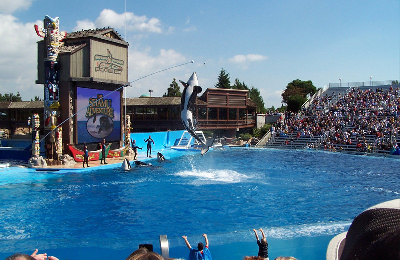 Sea World – Orlando