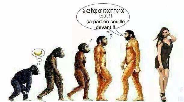 Darwin {JPEG}