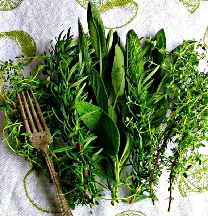 white dishtowel with bunches of fresh rosemary, sage and thyme