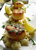 Seared sea scallops on a bed of risotto garnished with lemon wedges