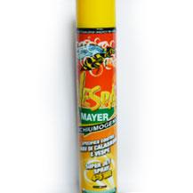 Schiumogeno contro nidi di vespe e calabroni - Certaldo