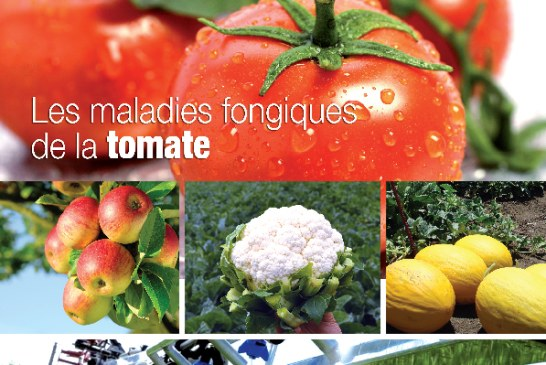 Agriculture du maghreb N° 80 Janvier 2014