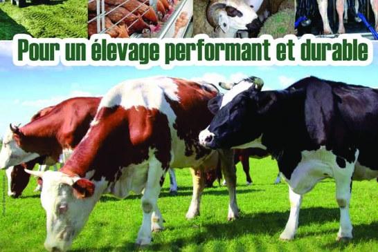 Agriculture du maghreb N° 82-2015