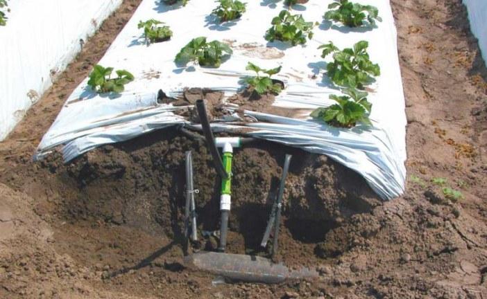 L'aération de l'eau avec l'irrigation goutte-à-goutte favorise la santé des sols