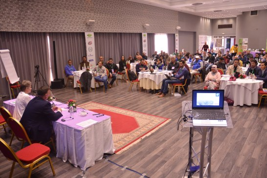 Blueberries Morocco: Une première édition couronnée de succès
