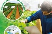 La Clinique des Plantes: Une nouvelle ère du service agricole