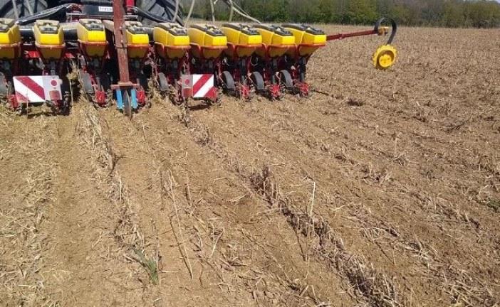 Avant le semis de maïs ou en combiné, le strip-till se développe
