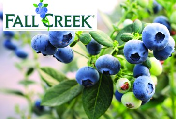 Fall Creek Europe présente la nouvelle Fall Creek Collection™ au salon Fruit Attraction