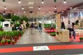 Flormart 2019: Biodiversité et innovations pour la 70ème édition