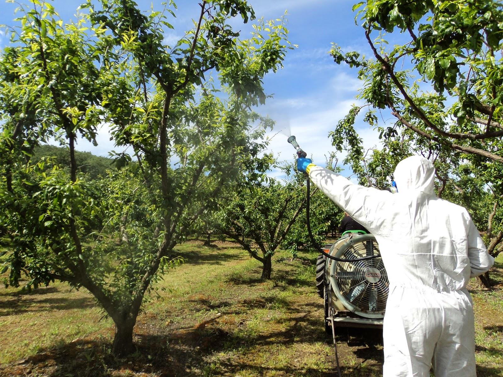 Séminaire sur les méthodes de prévention et de lutte contre les bioagresseurs à Berkane