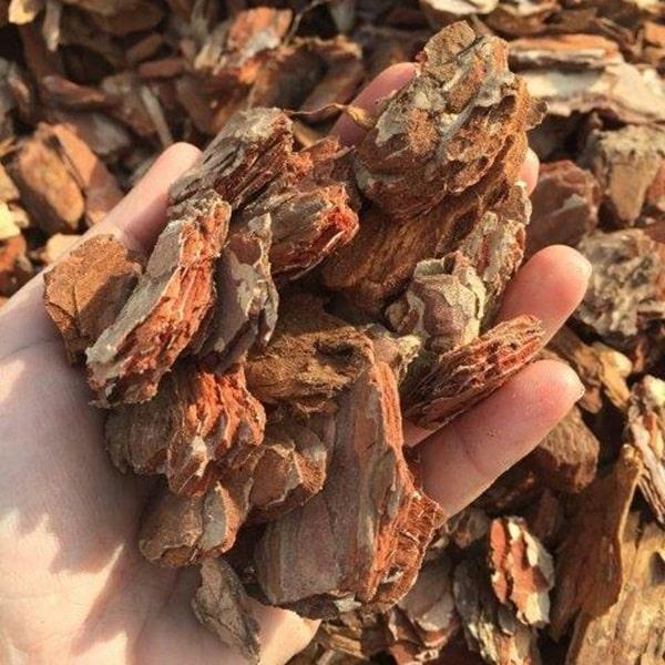 Corteccia di pino rosso 20/40 mm