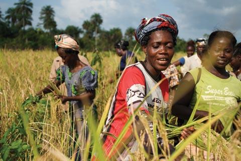 Women for Africa Foundation