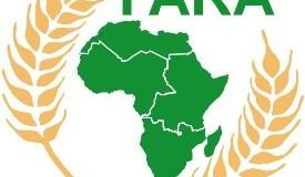 fara africa