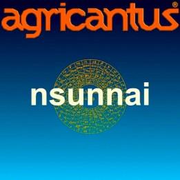 Copia di Cover Nsunnai 2