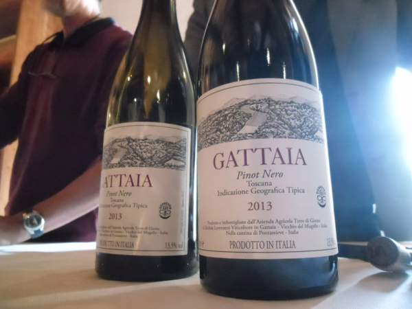 Le bottiglie di Gattaia che produce Michele Lorenzetti, artefice delle Terre di Giotto