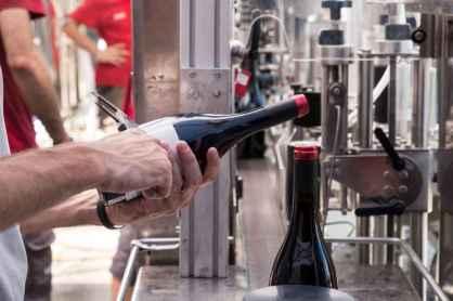 A Poggio Terselli si producono 50.000 bottiglie di vino ma il potenziale è di 100.000