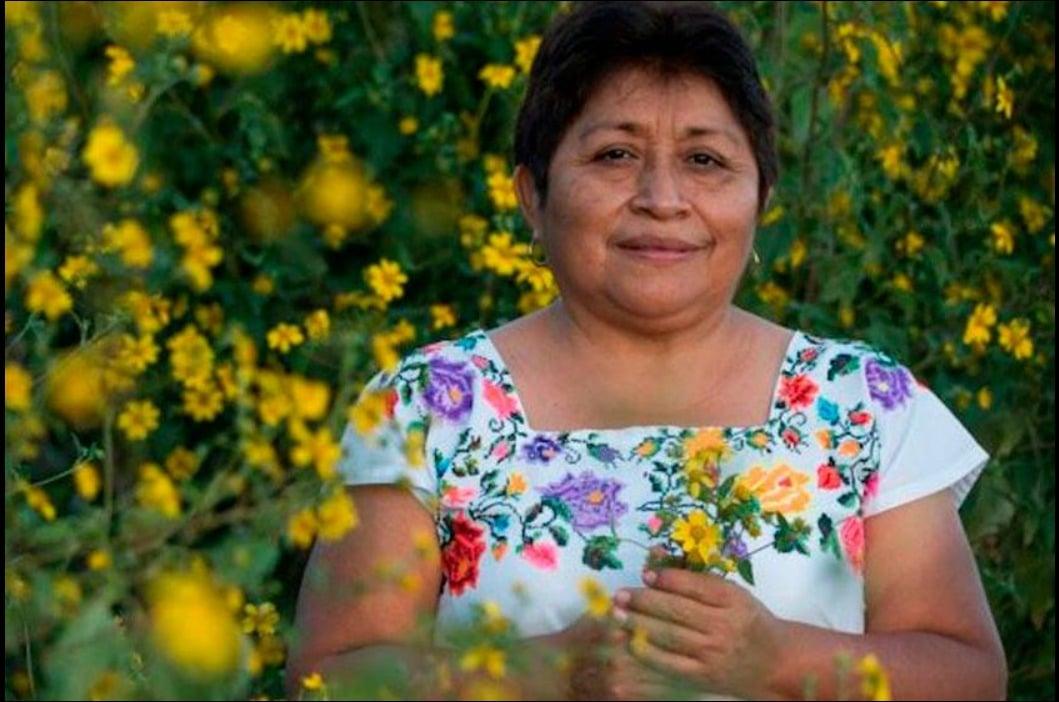 Leydy Pech, l'apicoltrice messicana che ha fermato la Monsanto